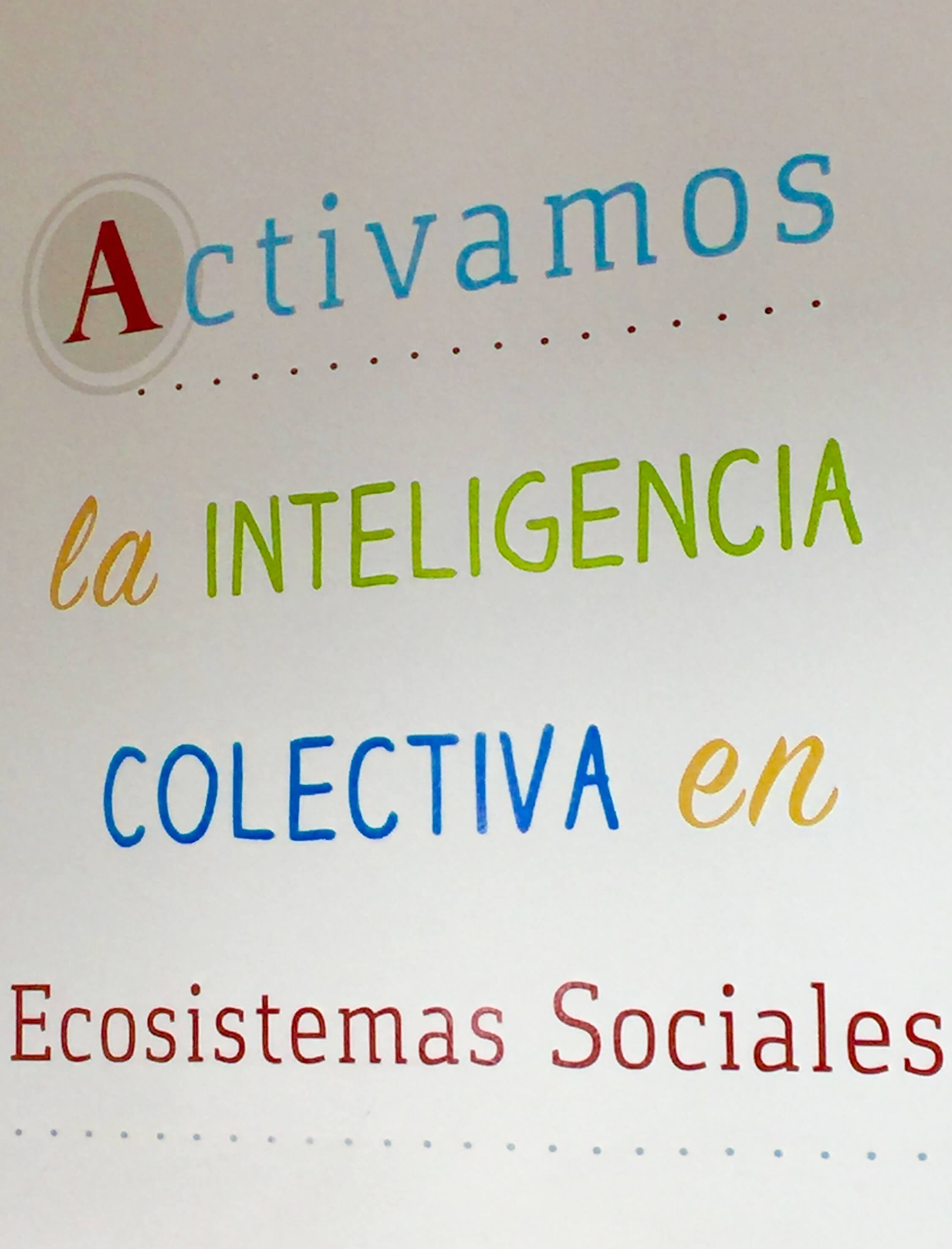 Quote: ' we activate collective intelligence in social ecosystems""